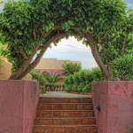 تصاویری از معماری سبز