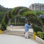 تصاویری از معماری سبز 1