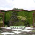 معماری سبز 35