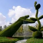 معماری سبز 5