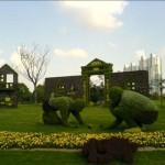 معماری سبز 6