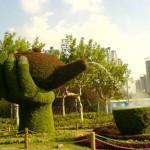 معماری سبز 9