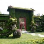 معماری سبز 12