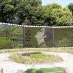 معماری سبز 18
