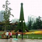 معماری سبز 20